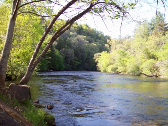 Trout fishing man versus fish for Toccoa river fishing