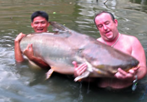 mekong catfish 300x208